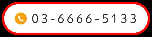 0366665133